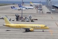 ニュース画像:FDA、遊覧チャーターの途中に離着陸!? 小牧発着・セントレア見学ツアー