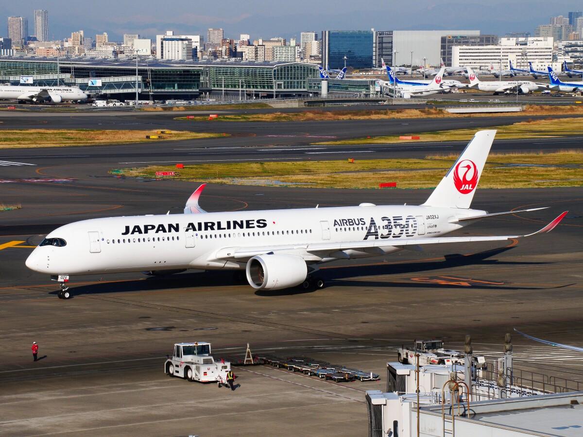 ニュース画像 2枚目:「JA02XJ」は2019年8月に受領。「革新」を示すシルバーでA350を表現 (mich_stoneさん撮影)