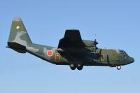 ニュース画像:在外邦人の輸送で派遣された空自機、帰国へ 撤収命令