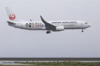 ニュース画像:JALの奄美・沖縄特別塗装機、羽田/奄美線で運航開始