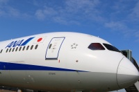 ニュース画像:ANA、緊急事態宣言延長で国内線6,510便を運休・減便 運航率9月64% 10月73%