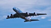 ニュース画像:ANA A380「フライングホヌ」、新千歳で初の遊覧飛行