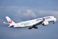 ニュース画像 2枚目:JAL イメージ (森の天使さん 2020年3月撮影)
