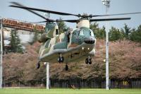 ニュース画像:熊谷基地、CH-47J輸送ヘリコプターの体験搭乗 11月に実施