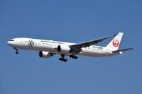 JAL、1月末まで国際線燃油サーチャージ額 変更なしの画像