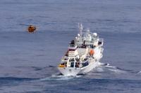 ニュース画像 2枚目:調査船にアプローチするシーキング