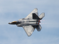 ニュース画像:RIAT 2016にF-22デモチームも参加 F-35とステルスまつりが実現