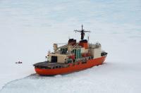 ニュース画像:砕氷艦「しらせ」、豪オーロラ・オーストラリスを輸送支援
