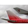 ニュース画像 2枚目:コントレールをイメージした新生ロシア航空のロゴ