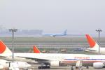 ふじいあきらさんが、羽田空港で撮影した大韓航空 737-9B5の航空フォト(写真)