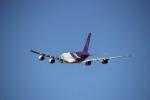 ヤングさんが、成田国際空港で撮影したタイ国際航空 A380-841の航空フォト(写真)