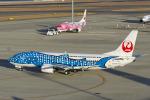 Scotchさんが、中部国際空港で撮影した日本トランスオーシャン航空 737-4Q3の航空フォト(飛行機 写真・画像)