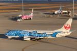 いっくんさんが、中部国際空港で撮影した日本トランスオーシャン航空 737-4Q3の航空フォト(飛行機 写真・画像)