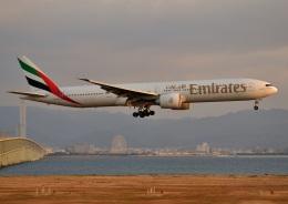 航空フォト:A6-ECA エミレーツ航空 777-300