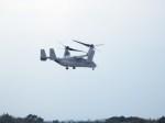 hidenet0319さんが、新田原基地で撮影したアメリカ海兵隊 MV-22Bの航空フォト(飛行機 写真・画像)