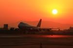 LOTUSさんが、伊丹空港で撮影した全日空 747-481(D)の航空フォト(写真)