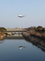 DREAMWINGさんが、高知空港で撮影したJALエクスプレス 737-846の航空フォト(飛行機 写真・画像)
