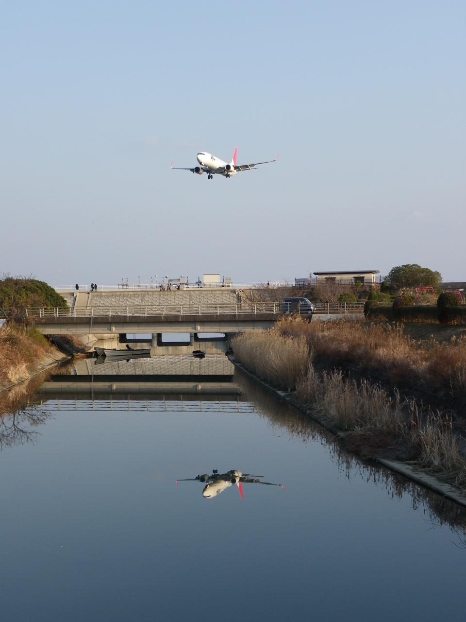 DREAMWINGさんのJALエクスプレス Boeing 737-800 (JA322J) 航空フォト