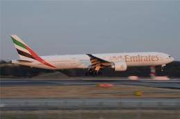 航空フォト:A6-EBR エミレーツ航空 777-300