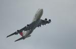 MizukinPaPaさんが、羽田空港で撮影した日本航空 747-146B/SR/SUDの航空フォト(写真)
