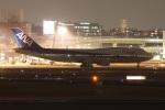 turt@かめちゃんさんが、伊丹空港で撮影した全日空 747-481(D)の航空フォト(写真)