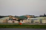 take_2014さんが、茨城空港で撮影した航空自衛隊 RF-4E Phantom IIの航空フォト(写真)