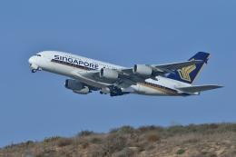 Cimarronさんが、ロサンゼルス国際空港で撮影したシンガポール航空 A380-841の航空フォト(飛行機 写真・画像)