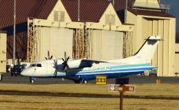 TKBKさんが、横田基地で撮影したアメリカ空軍 C-146A Wolfhoundの航空フォト(飛行機 写真・画像)