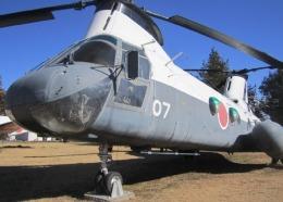 どっかの人さんが、下総航空基地で撮影した海上自衛隊 KV-107IIA-3Aの航空フォト(飛行機 写真・画像)