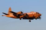 take_2014さんが、厚木飛行場で撮影した海上自衛隊の航空フォト(写真)