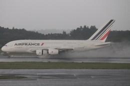 けんけんさんが、成田国際空港で撮影したエールフランス航空 A380-861の航空フォト(飛行機 写真・画像)