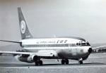 TKOさんが、鹿児島空港で撮影した全日空 737-281/Advの航空フォト(写真)
