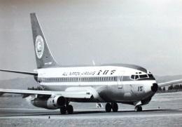 TKOさんが、鹿児島空港で撮影した全日空 737-281/Advの航空フォト(飛行機 写真・画像)