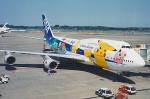 sunagimoさんが、成田国際空港で撮影した全日空 747-481の航空フォト(写真)