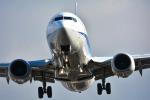 パンダさんが、伊丹空港で撮影した全日空 737-881の航空フォト(写真)