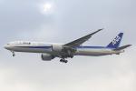 HND Spotter Rei U.さんが、ジョン・F・ケネディ国際空港で撮影した全日空 777-381/ERの航空フォト(写真)