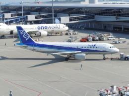ゴンタさんが、中部国際空港で撮影した全日空 A320-214の航空フォト(飛行機 写真・画像)