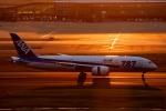 このえさんが、羽田空港で撮影した全日空 787-8 Dreamlinerの航空フォト(写真)