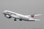 AkiChup0nさんが、羽田空港で撮影した日本航空 787-8 Dreamlinerの航空フォト(写真)