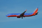 matsuさんが、ロサンゼルス国際空港で撮影したサウスウェスト航空 737-8H4の航空フォト(飛行機 写真・画像)