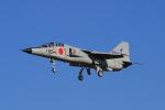 EXIA01さんが、松島基地で撮影した航空自衛隊 T-2の航空フォト(写真)