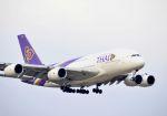 tomo@Germanyさんが、成田国際空港で撮影したタイ国際航空 A380-841の航空フォト(写真)