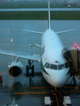 バーバ父さんが、トリノ・カゼッレ空港で撮影したアリタリア航空 A319-112の航空フォト(飛行機 写真・画像)