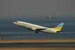 コタちゃんさんが、羽田空港で撮影したAIR DO 737-4Y0の航空フォト(写真)