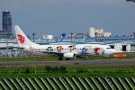 夏奈さんが、成田国際空港で撮影した中国国際航空 737-86Nの航空フォト(写真)