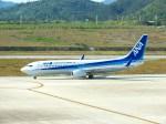 スカイマンタさんが、新石垣空港で撮影した全日空 737-881の航空フォト(写真)