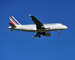 じーく。さんが、トゥールーズ・ブラニャック空港で撮影したエールフランス航空 A319-113の航空フォト(写真)