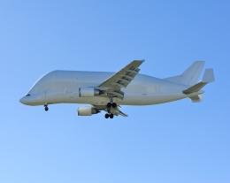 じーく。さんが、トゥールーズ・ブラニャック空港で撮影したエアバス・トランスポート・インターナショナル A300B4-608STの航空フォト(写真)
