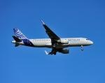 じーく。さんが、トゥールーズ・ブラニャック空港で撮影したエアバス A320-111の航空フォト(写真)