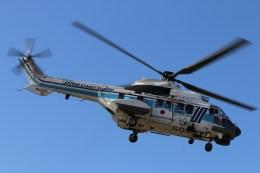 けんけんさんが、静岡ヘリポートで撮影した海上保安庁 AS332L1 Super Pumaの航空フォト(飛行機 写真・画像)